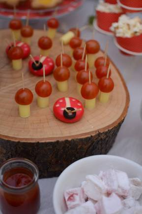 Ladybird & Toadstools